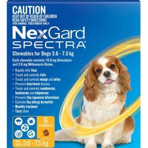 Nexgard Flea and Worm 3.6 - 7.5 kg, 6 Months, Gippsland Veterinary Group