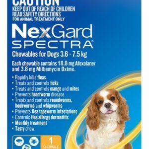 Nexgard Flea and Worm 3.0 - 7.6 kg One Month, Gippsland Veterinary Group