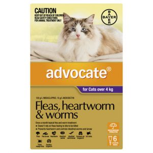 Advocate Fleas, Heartworm & Worms For Cats Over 4kg - 6 Pack Gippsland Veterinary Group