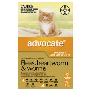 Advocate Fleas, Heartworm & Worms For Kittens & Small Cats Up To 4kg - 6 Pack Gippsland Veterinary Group