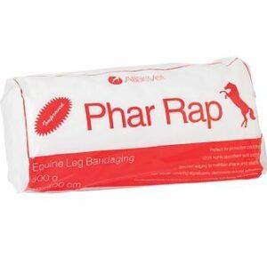 Phar Rap Equine Leg Bandaging Gippsland Veterinary Group